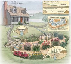 How to Build a Rain Garden in Your Yard - Step by Step | The Family Handyman: Very practical steps and advice for homeowners