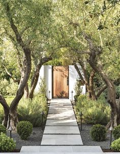 Modern Small Stone Landscaping Ideas In Front Yard Stone Landscaping, Modern Landscaping, Outdoor Landscaping, Front Yard Landscaping, Landscaping Ideas, Front Walkway, Garden Path Lighting, Backyard Lighting, Landscape Lighting
