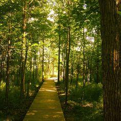 Ledges Trail @ Liberty Park, Photo by kladkins