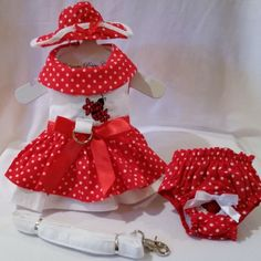 New!  Adorable! The Little Lady Harness Dog Dress 4 Piece Set