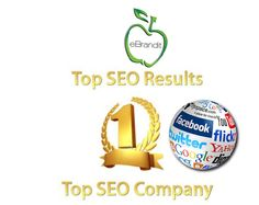 eBrandit provides top seo services in a professional way. It covers all aspects of internet marketing and business applications.