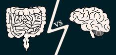 O vlivu mikrobiomu na zdraví člověka jsme již několikrát psali. Tento článek popisuje nejnovější výzkum týkající se depresí a psychických poruch. No myslím, že mnoho lidí, pokoušejících se o samoléčbu, již některé informace z článku znají. Royal Jelly Benefits, Enteric Nervous System, Abdominal Bloating, Small Intestine Bacterial Overgrowth, Brain Connections, Gut Brain, Psychological Well Being, Psychology Disorders, Effects Of Stress