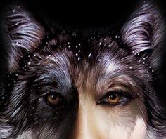 wolf shape-shifter