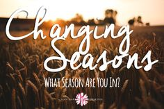Changing Seasons: What Season Are You In? | Making the Most Blog