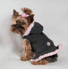 Gray and Pink Coat