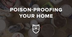 Common household products can be dangerous - 8 things you need to do NOW to poison-proof your house & garage!