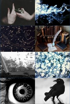 Writing By The Slytherin Queen — ||Ravenclaw Aesthetic||
