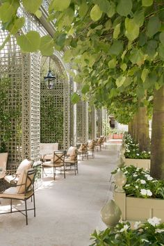 hotel paris The best Paris hotels Restaurant En Plein Air, Outdoor Restaurant, Courtyard Restaurant, Courtyard Hotel, Boutique Hotel Paris, Boutique Hotels, Best Paris Hotels, The Ritz Paris, Paris Paris