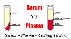 Difference between Serum and Plasma. Serum is the fluid from blood without the clotting factors while Plasma is the fluid that contain clotting factors.