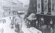 Circus elephants walking down Silver Street.