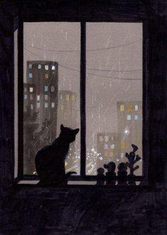 night watching