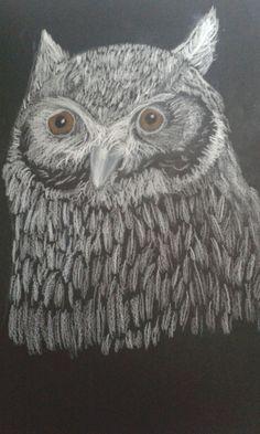 White owl on black paper