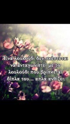 Greek Quotes, Out Loud, Picture Quotes, Motivational Quotes, Inspirational, Pictures, Photos, Motivating Quotes, Quotes Motivation