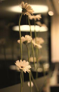 casamento mint, mint wedding, flowers, flores, backdrop.