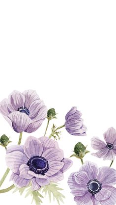 New wallpaper ipad backgrounds wall papers ideas Ipad Background, Iphone Background Wallpaper, Cellphone Wallpaper, Trendy Wallpaper, New Wallpaper, Cute Wallpapers, Illustration Botanique, Garden Illustration, Watercolor Flowers