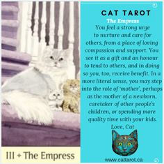 Monthly readings on my YouTube channel: www.youtube.com/c/cattarot Book your reading: www.cattarot.ca Love, Cat #tarot #tarotcards The Empress, Tarot Cards, Compassion, Channel, How Are You Feeling, Feelings, Reading, Cats, Youtube