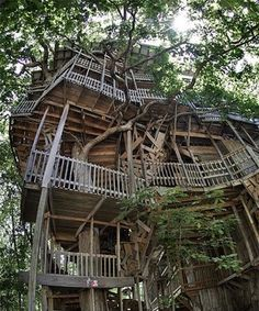 can I have THIS tree house??
