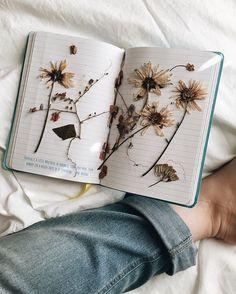 A collection of botanical specimens. Art Hoe Aesthetic, Flower Aesthetic, Photo Portrait, Arte Sketchbook, Pressed Flower Art, Nature Journal, Felt Hearts, Art Journal Inspiration, Belle Photo