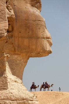 The Sphinx, Giza,  Egypt #awesome #places Visit www.hot-lyts.com to see more background images