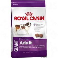 Royal Canin Giant Adult à prix discount sur bitiba.fr