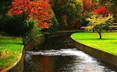 Autumn in my Town