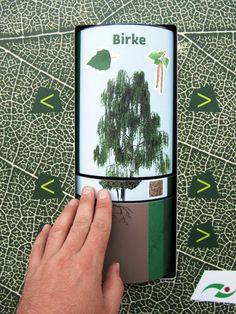 Interaktives Exponat / Hands-On Zauberbaum. Konzipiert und realisiert von Impuls-Design.
