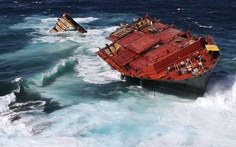 The Monrovia-flagged container ship Rena, stuck on Astrolabe Reef, is pounded by high seas off the coast of Tauranga. The stern of a broken-up ship that caused New Zealand's biggest sea pollution disaster sank on April 4 after waves of up to 12 metres (39 foot) pounded the wreck.