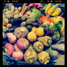 Forgotten veggies by Atlantis Handelshuis