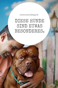 || #Hund || Ideen || #Hunde || Tipps || Tricks || Ideen || Liebe || Welpen || Bilder || #Hundeliebe