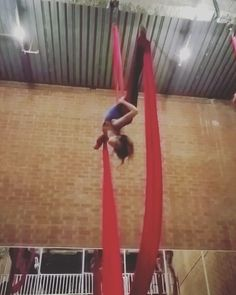 """244 Likes, 4 Comments - Anna Cicone (@00silkdrop) on Instagram: """"So happy to be back in Brett's class! #aerialist #aerialistsofig #aerialistsofinstagram…"""""""