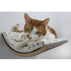 Curve Pet Bed - a stylish alternative to the kitty condo, though pricey! $200