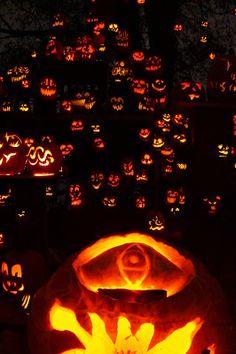 Roger Williams Park Zoo Jack-O-Lantern Spectacular Pumpkinville