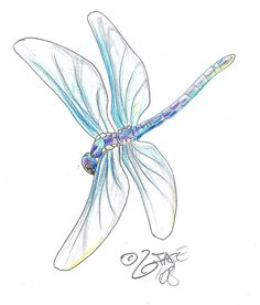 Dragonfly Tattoos brought to you by Free Tattoo Ideas - Get your Tattoo Ideas, Tattoo Designs and Tattoo Flash at FreeTattooIdeas.net