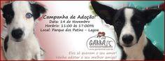 BONDE DA BARDOT: RJ: Sábado o G.A.R.R.A. realiza campanha de adoção e recebe equipe do Dr. Pet no Parque dos Patins, na Lagoa (14/11)