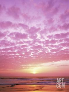 Pink Sunset Over Heceta Beach Photographic Print by Craig Tuttle at Art.com