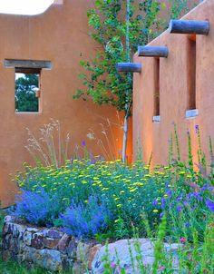 Our Denver landscape design team is highly skilled at building Colorado Perennial & Annual Gardens to make your landscaping come alive. Green Landscape, Landscape Design, Garden Design, Courtyard Design, Front Courtyard, Arizona Gardening, Desert Gardening, Desert Plants, Denver