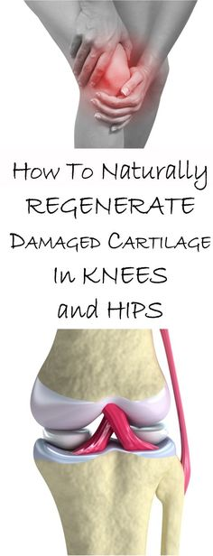 How To Naturally Regenerate Damaged Cartilage In Knees and Hips #knees #hips #health #fitness #health&fitness #joint pain