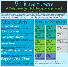 5 Minute Fitness! It's only 5 minutes so I know it can fit into my day no matter how crazy I get and not feel like I'm putting fitness on the back burner. The idea is that each of the 4 strength exercises should take about 30 seconds (including rest time in between). Every move works multiple muscle groups and you'll get even better results if you remember to hold your abs in tight for squats and lunges!