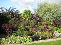 Black and Burgundy colour theme Burgundy Colour, Herbaceous Border, Hyde, Color Themes, Display, Plants, Black, Decor, Floor Space