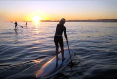Try your hand at the trendy sport of stand-up paddleboarding (SUP) on the calm, sheltered waters of Bodega Harbor and surrounding local inlets.