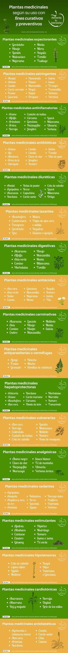 Amplia lista con los usos de las plantas medicinales en fitoterapia; descubre cómo se preparan y cuáles son las adecuadas para qué afecciones. #alimentatubienestar
