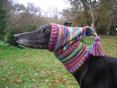 Greyhound/Galgo+Pixie+Hat+by+Crafting4Greyhounds+on+Etsy,+£12.00