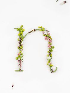 Blossom Type is a two-part creative project of still life and interactive video devised by Alice Mourou, Dmitriy Petrov, Olesya Korsak and Nikita Schukin. Typography Served, Typography Letters, Graphic Design Typography, Lettering Design, Hand Lettering, Creative Lettering, Inspiration Typographie, Types Of Lettering, Floral Letters