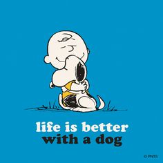 life is better with a dog.