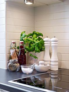 albahaca en la cocina