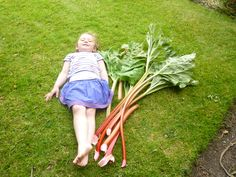 How long should a stick of rhubarb be?! Elizabeth's grand daughter found out on Ryehill Farm, Northumberland.
