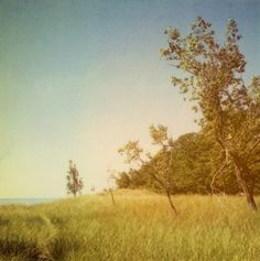 Polaroid Photograph - Landscape Photograph - Beach Photography - Michigan - Fine Art Photograph- The View From Above- Signed- Alicia Bock on Etsy, $35.00