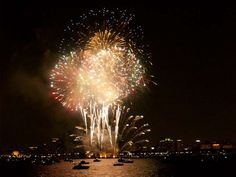 Chicago Fireworks Sailboat Charter, Charter Boat, Chicago Fireworks, Sailing Charters, Sunday Special, Power Boats, This Or That Questions, Disney Princess, Cake