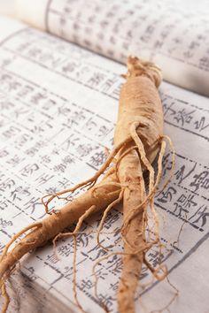 GINSENG l Le Ginseng est utilisé principalement en pharmacopée. Plante tonifiante par excellence, c'est un stimulant vasomoteur ayant une action tonique générale sur l'organisme. Il améliore les performances aussi bien physiques qu'intellectuelles quel que soit l'âge, Il aide notre organisme à lutter contre le stress, la fatigue, le manque de concentration et de désir sexuel...