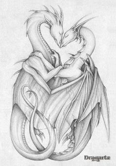 Dragons in Love from theOtaku.com